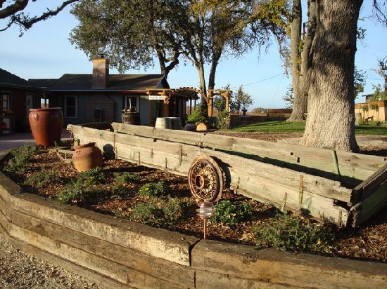 Pomar Junction Vineyard & Winery: Old Farm Equipment entering tasting room