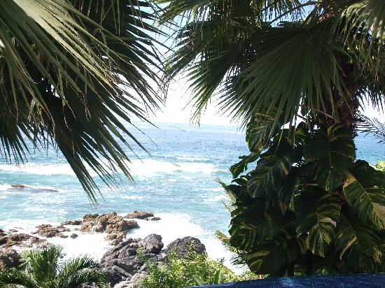 casa carole pool view