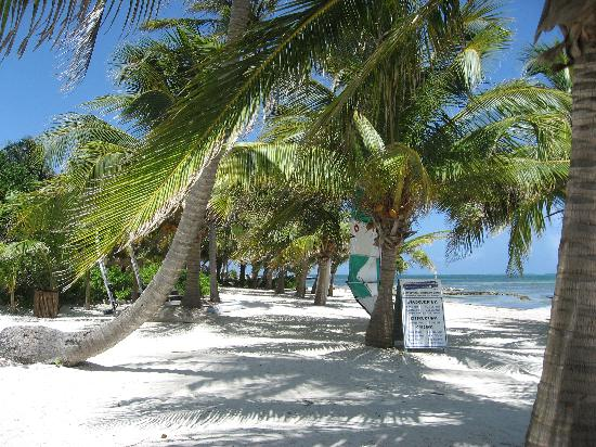 attraction review reviews asian garden pedro ambergris caye belize cayes