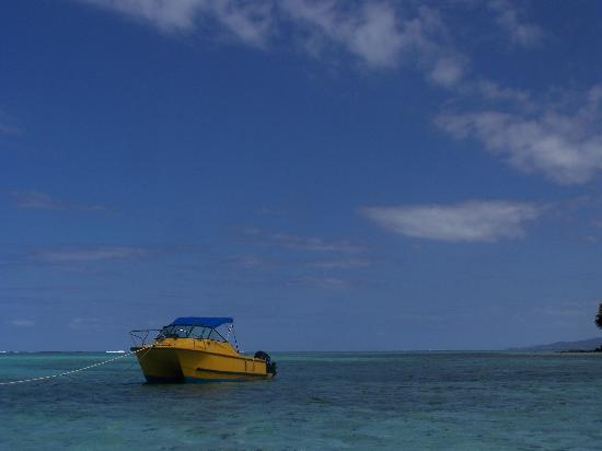 Matanivusi Surf Resort: one of the boats