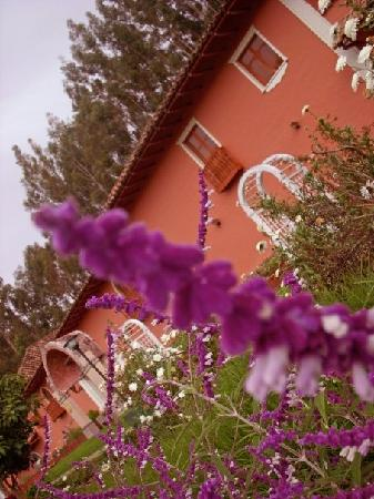 Posada del Puruay: flowers in front of the hotel