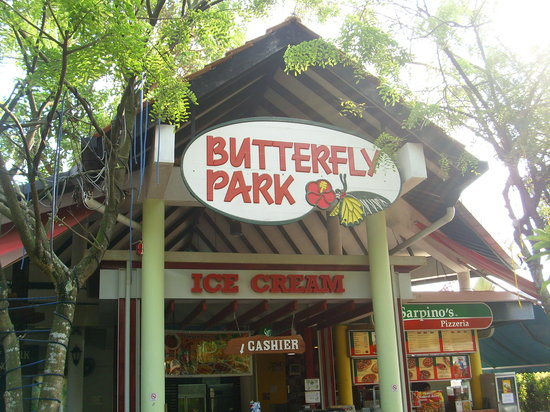 Butterfly Park & Insect Kingdom : The Entrance