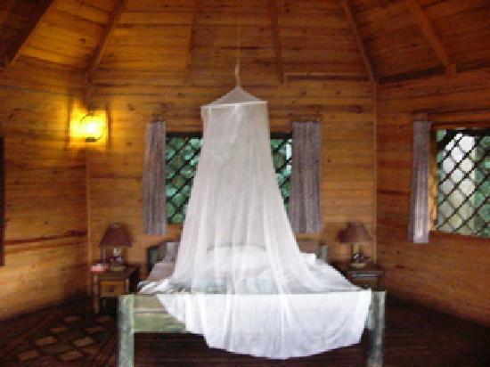 Jacana Safari Lodge: My bedroom