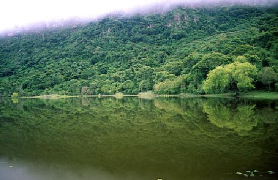 بوليفيا: Laguna Quirusillas