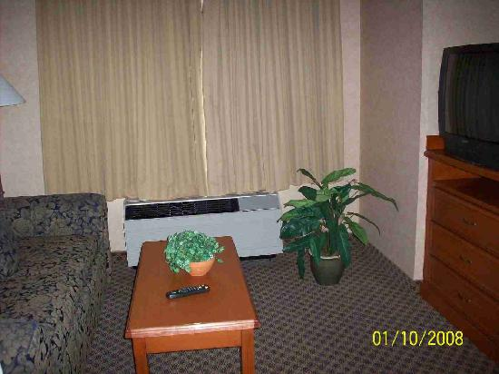 Hampton Inn & Suites Langley Surrey: Living area