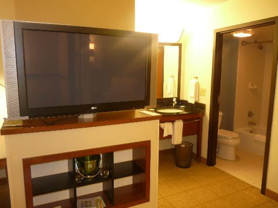 Hyatt Place OKC Airport: TV and bathroom