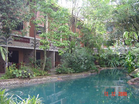 100 Islands Resort & Spa: Landscape fishpond beside rooms