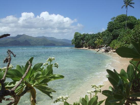 New Caledonia: les pieds en éventail