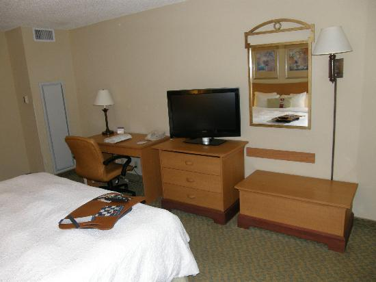 Hampton Inn & Suites by Hilton - Miami Airport / Blue Lagoon: Tv plana-escritorio