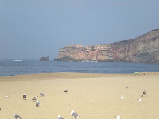 Tours for You - Day Tours: Beach at Nazare