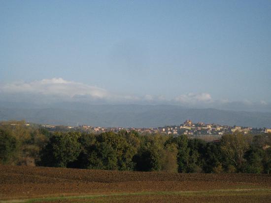 Holiday House Podere Pescia: view of Castiglione del Lago from back window