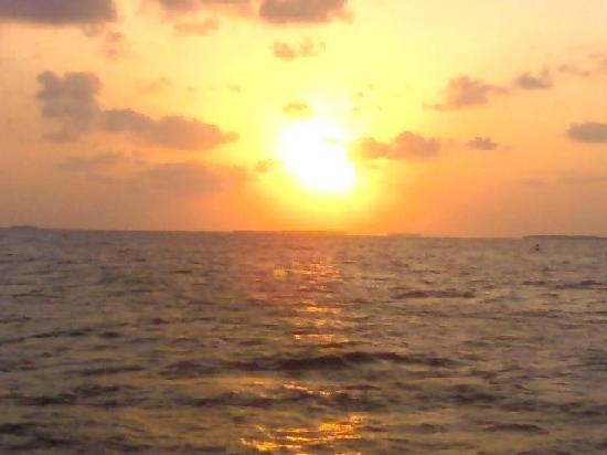 Royal Palms: Wowee sunsets