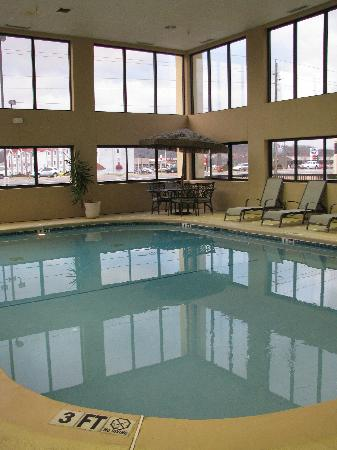 Hampton Inn Sevierville: Pool Area