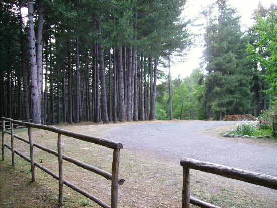 Hotel Camping Cecita dul Lago: una vista del giardino
