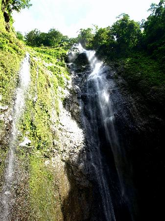 Hotel Villa Paraiso: San Ramon waterfalls