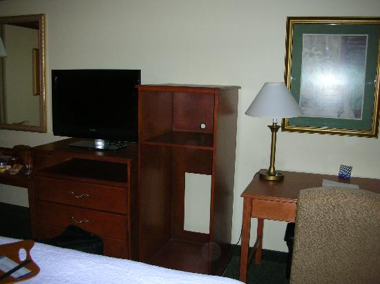 Hampton Inn Marion: Other View of Room