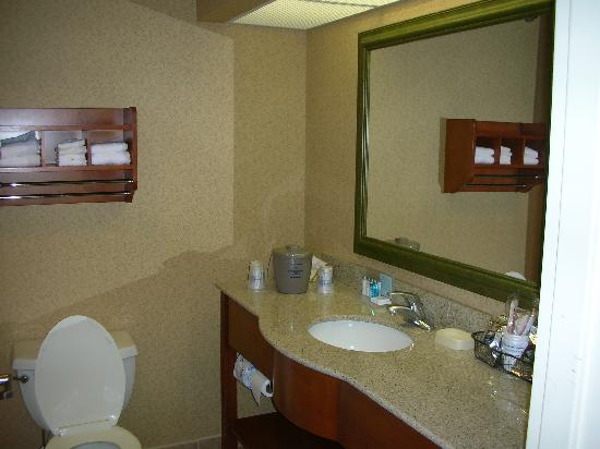 Hampton Inn Marion: Bath