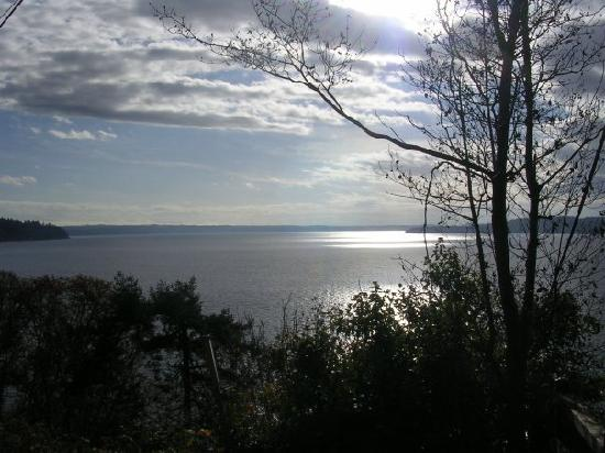 Three Tree Point Bed and Breakfast: Puget Sound in the morning