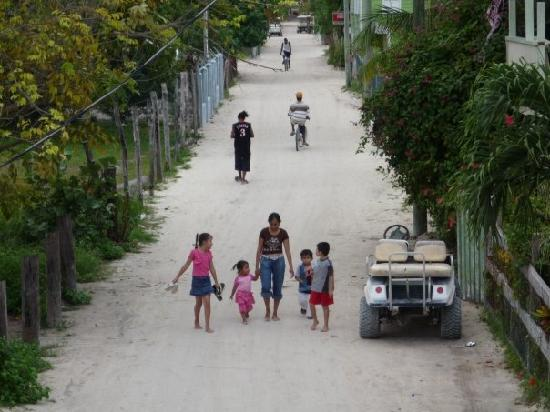 OASI: Caye Caulker street - no cars, just bikes and go carts