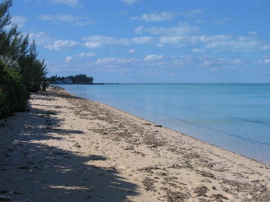 Ingraham's Beach Inn : Beach