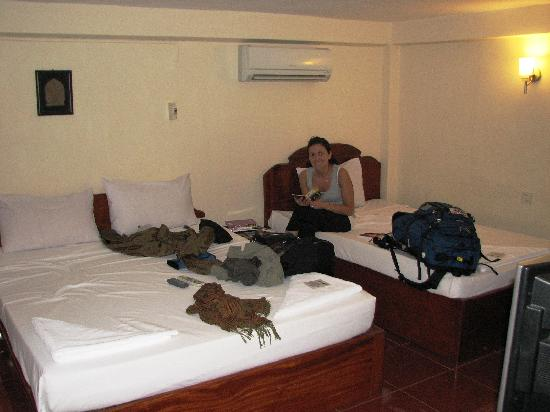 Rosy Guest House: Double Standard fan and A/C