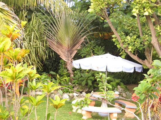 WildPalm Guest House: Photo 2