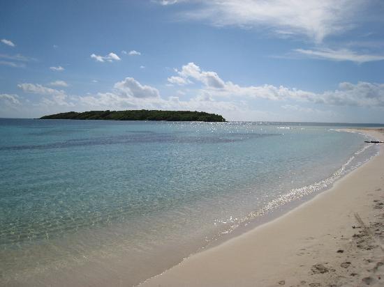 WildPalm Guest House: Blue Beach