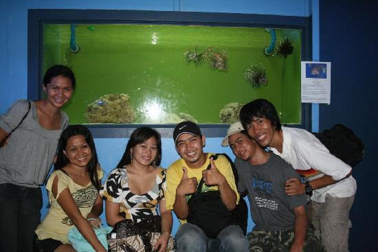 ... Mactan Island Aquarium, ?????? ?????? - TripAdvisor