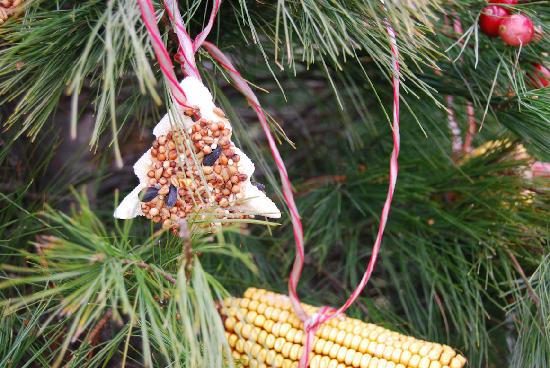 Reba Farm Inn: Edible Ornaments