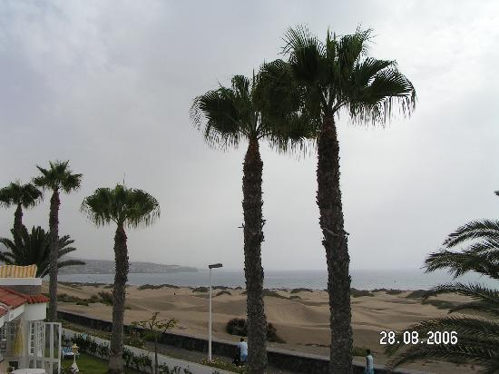 Club Primavera: View of Dunes from Roof terrace.