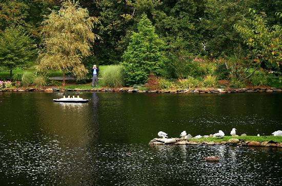 Pond with Miniature Boat Picture of Halifax Public Gardens