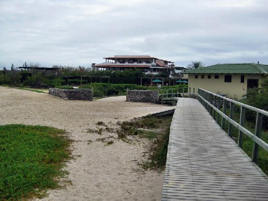 Finch Bay Galapagos Hotel: Walway to hotel - watch out for Iguanas!