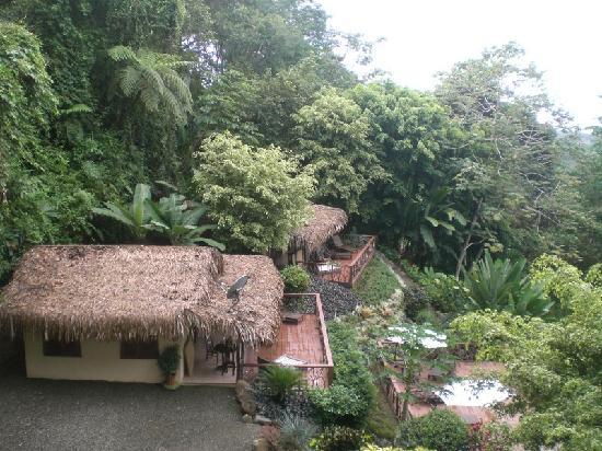 Las Terrazas de Ballena: bungalows