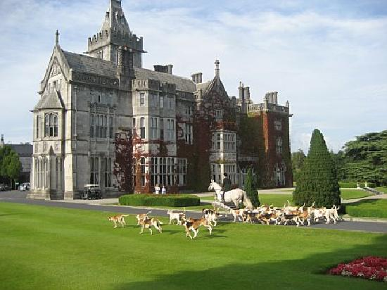 Adare Manor: Horse and Hounds greeting guests