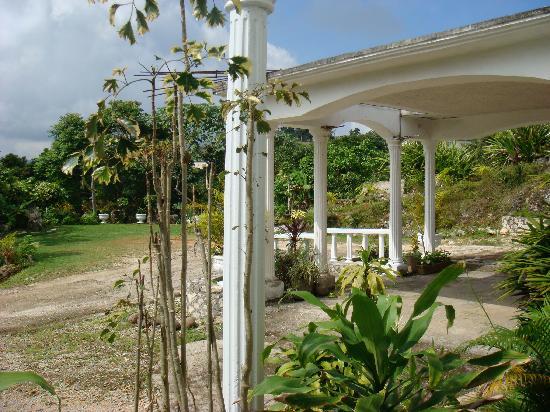 Mandeville, جامايكا: Front Entrance