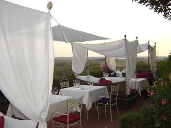 Osteria l'Oliveta: La terrazza