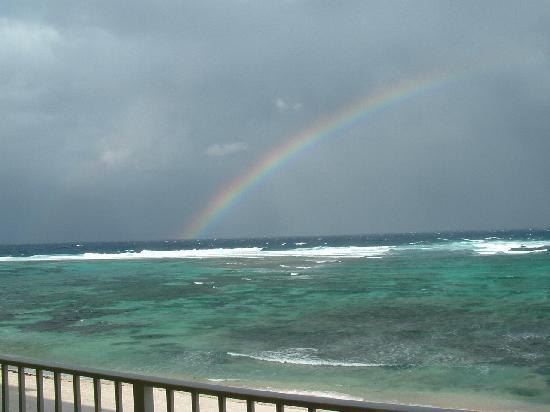 Wyndham Reef Resort: Reef rainbow