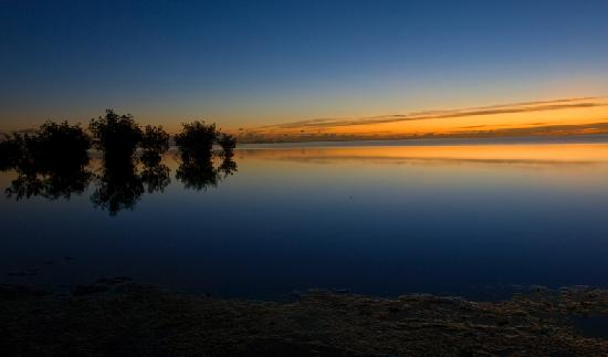 Coral Gables, فلوريدا: sunrise