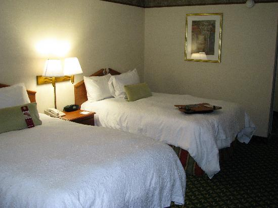 Hampton Inn Youngstown North : Bedroom -- Another angle