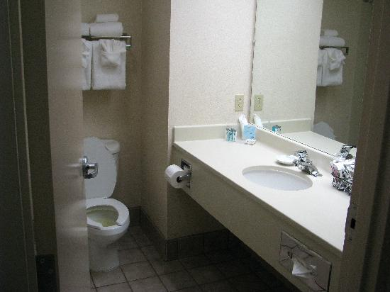 Hampton Inn Youngstown North : Bathroom