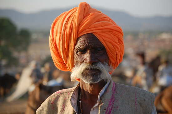 ‪الهند: Pushkar Camel Fair‬