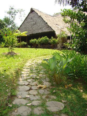 Amazonas Sinchicuy Lodge: salon principal