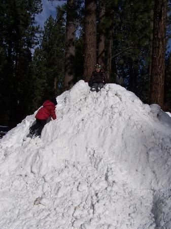 Best Western Big Bear Chateau : My Kids Playing in the Snow at the Hotel