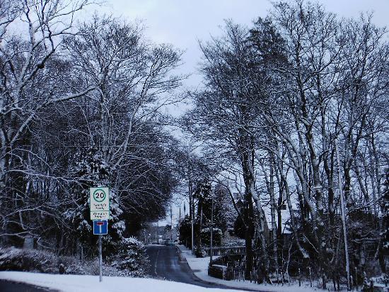 Abington Hotel: dec 08 after heavy snow