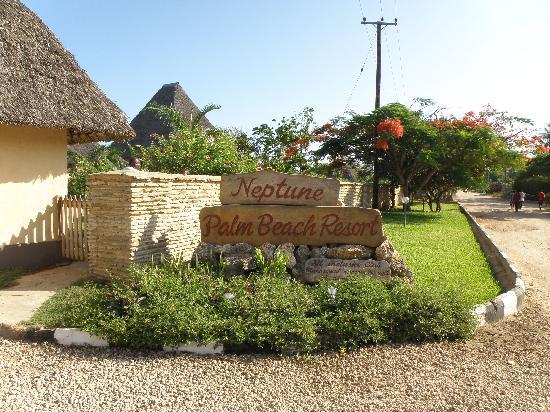 Neptune Palm Beach Boutique Resort & Spa: transats
