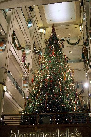 the 900 shops mall christmas tree - Chicago Christmas Tree
