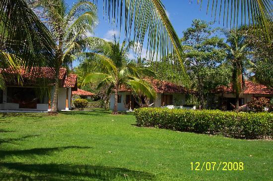 Hotel Villas Playa Samara: grounds outside the villa