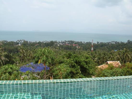TopCats Fresh Water Fishing Resort: What A view