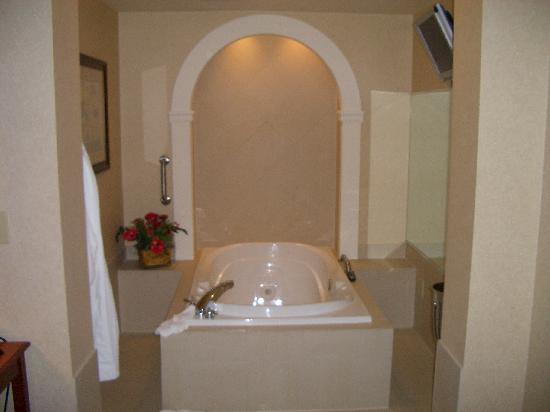Whirlpool Picture of Hilton Garden Inn ColumbusPolaris