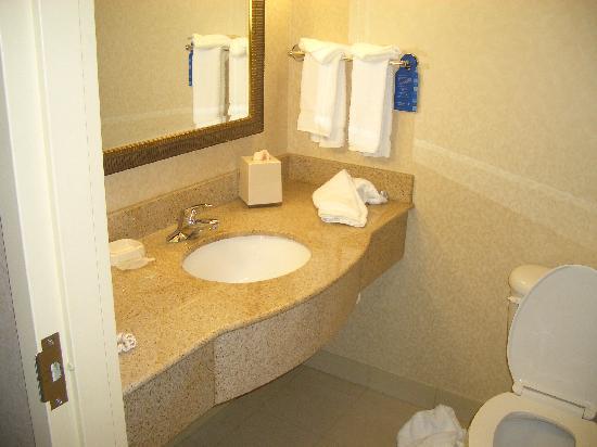 Hilton Garden Inn Columbus/Polaris: Bathroom